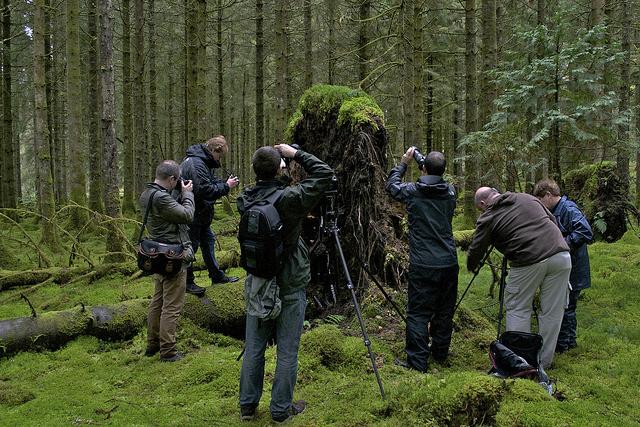 Enjoying some macro shots in the woods on the Worldwide Photo Walk 2011.